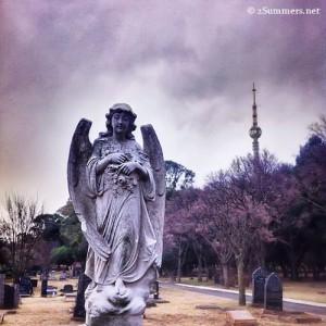 Brixton Cemetery Joburg